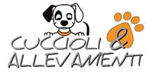 Cuccioli e Allevamenti