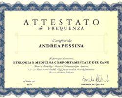 Attestato - Etologia e Medicina Comportamentale