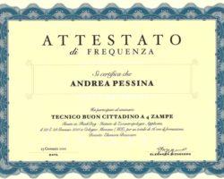 Attestato - Tecnico Buon Cittadino a 4 Zampe